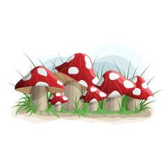 Poison mushrooms in grass