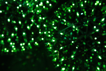 abstract green bokeh light on the dark background.