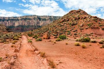 Road in wilderness