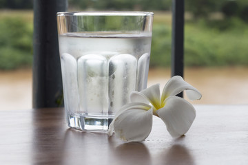 cool water and flower