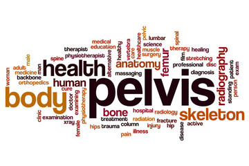 Pelvis word cloud