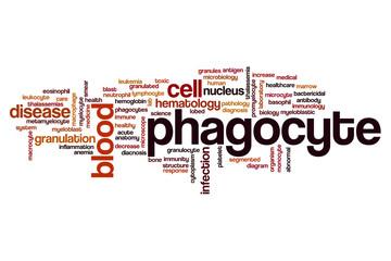 Phagocyte word cloud
