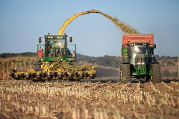 Récolte du maïs en France