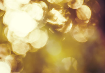 Autumn blurred background with natural bokeh
