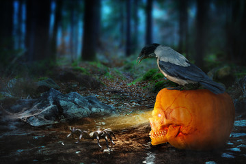 Halloween im Wald