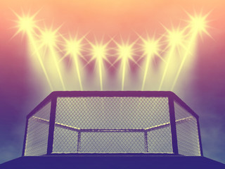 MMA fight cage and floodlights , MMA arena