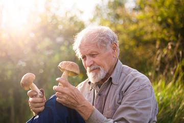 Пенсионер после сбора грибов в лесу