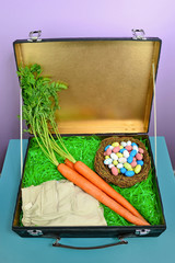 Fun concept image for what the Easter Bunny packs when he's going on vacation.