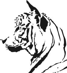 back tiger