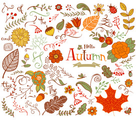 Autumn floral design elements in doodle style