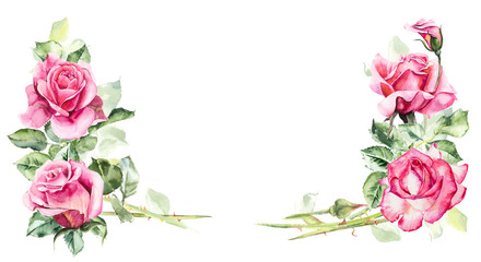 Frame from roses. Wedding drawings. Greeting cards. Flower backdrop. Decoration with blooming roses. Place for your text. Watercolor hand drawn illustration