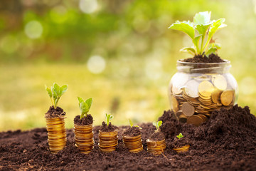 Save money with purpose-Investment And Interest Concept
