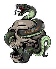 vector skull with snake