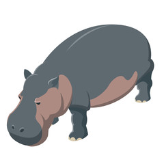 Hippo isometric icon