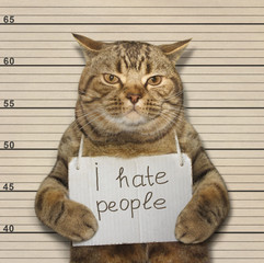 A bad cat hates people. It was arrested.