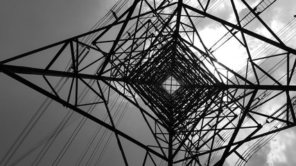 Bottom view of electric pole with beautiful sky in black and white shot. Plant, Power.