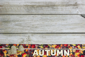 Blank wood sign with autumn decorations