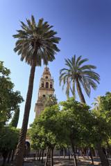 Mezquita Cathedral, Cordoba, Andalucia, Spain