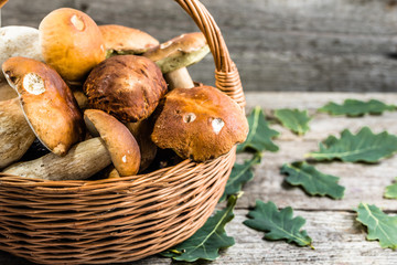 Boletus mushrooms in basket on wooden table