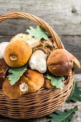 Fresh mushrooms in basket, boletus from forest on rustic backgro