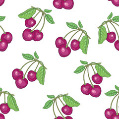 Seamless pattern with cherry berries