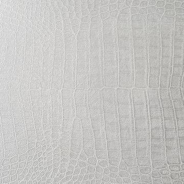 Cocodrile skin texture