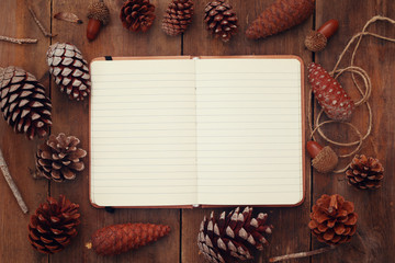 Top view of pine cones and blank open notebook