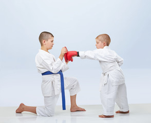 Little karateka beats punch on the simulator that brother keeps