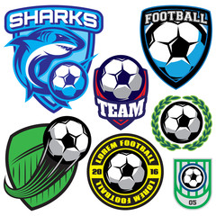 sports badge with a soccer ball and shark for the team, colored vector illustration