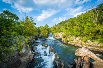 Rapids in the Potomac River at Great Falls, seen from Olmsted Is