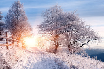 rural winter road and trees covered by frost. natural winter bac
