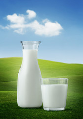 Milk in glassware on nature background