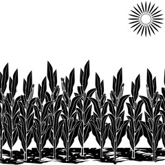 silhouette lawn with corn and shadow