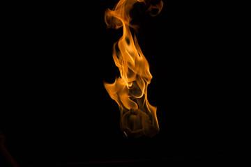 Feuer-Hexe