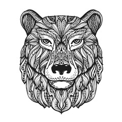 Bear or grizzly head isolated on white background. Hand drawn vector illustration with decorative elements
