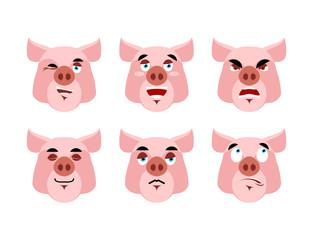 Pig Emotions. Set expressions avatar boar. Good and evil hog. Di