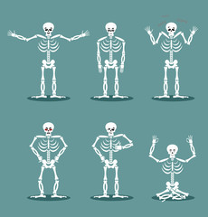 Skeleton set of different poses. Expression of dead emotions. An