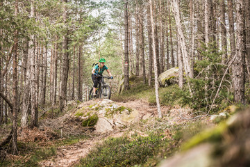 Woman mountain biking in forest, Bozen, South Tyrol, Italy