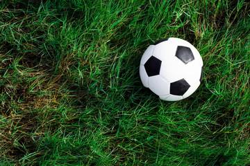 Soccer football on grass field, Soccer ball in fresh green summer or spring field grass