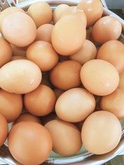 Group of egg background