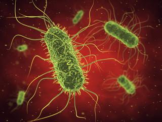 Bacteria , Infected blood , Germs , Epidemic bacterial disease Wall mural