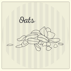 Oats. Vector line illustration. Sketch, doodle.