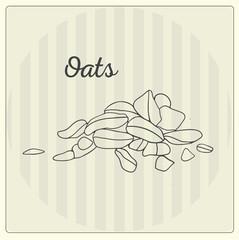 Oats. Vector line illustration. Sketch, doodle.