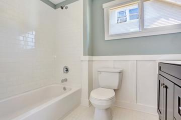 Blue bathroom interior with black vanity cabinet, toilet and white bath tub