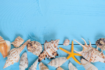 summer background. seashellson blue wooden background.