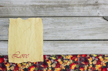 Blank sign by colorful leaves border