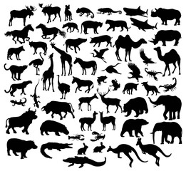 Various Silhouettes of Wild Animals and livestock, art vector design