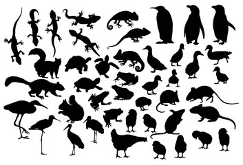 Little and Cute Animal Silhouettes, art vector design