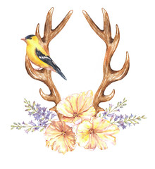 Beautiful illustration with the watercolor tulip flowers, hyacinth, bird and antlers. Floral composition in boho style with stylized antlers drawing and yellow tulips bouquet