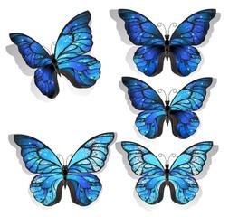 Set blue butterflies morpho
